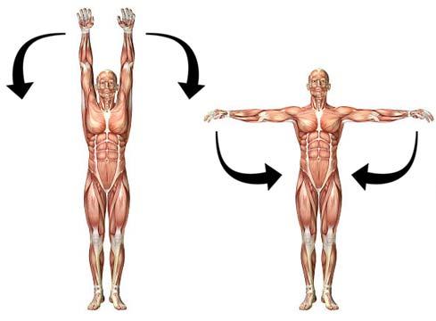 shoulder-adduction