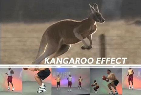 kangaroo-effect